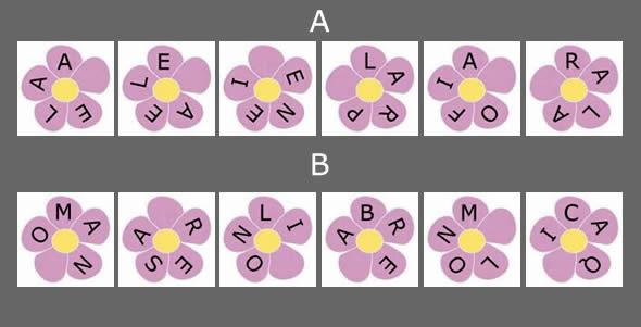 flores-con-nombres-escondidos