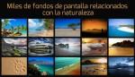 Miles de fondos de pantalla relacionados con la naturaleza