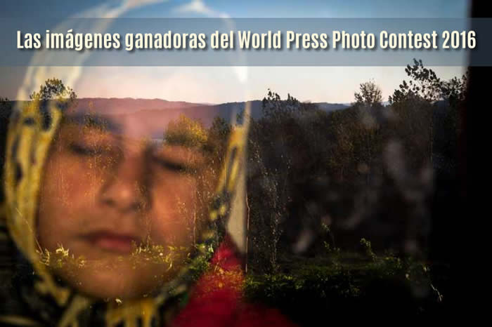 Las imágenes ganadoras del World Press Photo Contest 2016