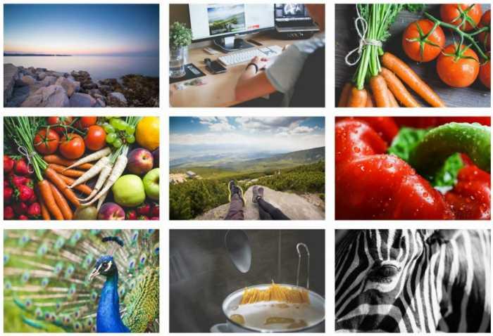 coleccion-100-fotos-varias-tematicas