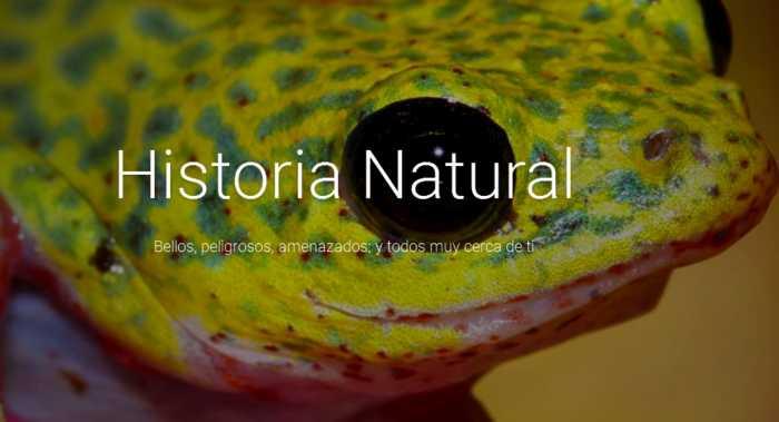 Un museo de historia natural en tu computadora