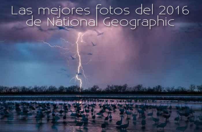 Las mejores fotos del 2016 de National Geographic