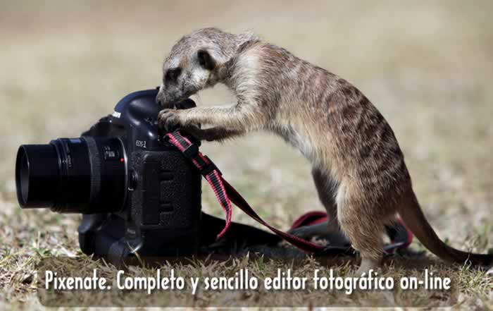 Pixenate. Completo y sencillo editor fotográfico on-line