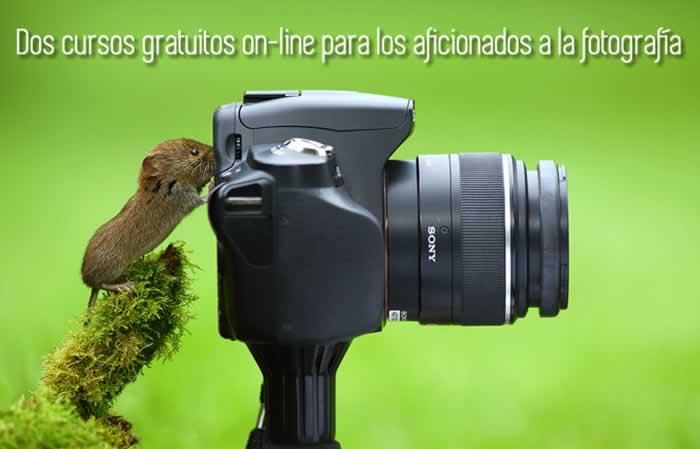 Dos cursos gratuitos on-line para los aficionados a la fotografía