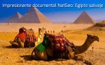 Impresionante documental NatGeo: Egipto salvaje