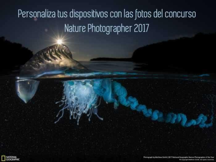 Personaliza tus dispositivos con las fotos del concurso Nature Photographer 2017 de NatGeo