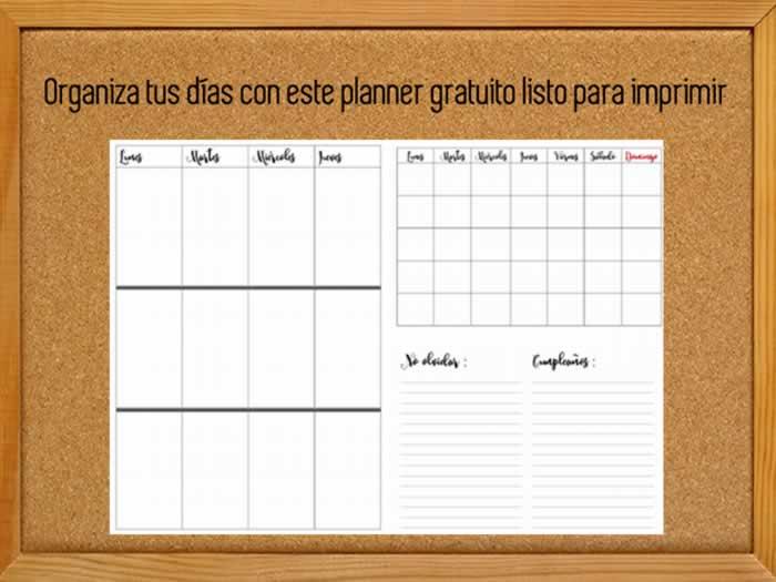 Organiza tus días con esta agenda planner gratuita lista para imprimir
