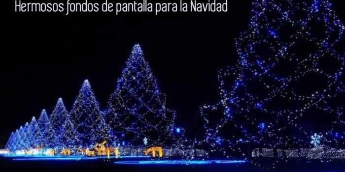 Miles de hermosos fondos de pantalla para la Navidad