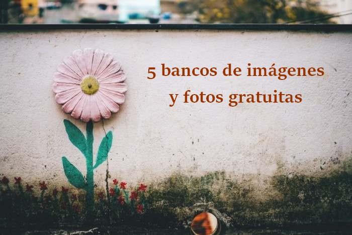 5 bancos de imágenes y fotos gratuitas para descargar