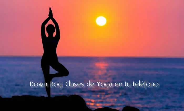 Down Dog. Clases de Yoga en tu teléfono