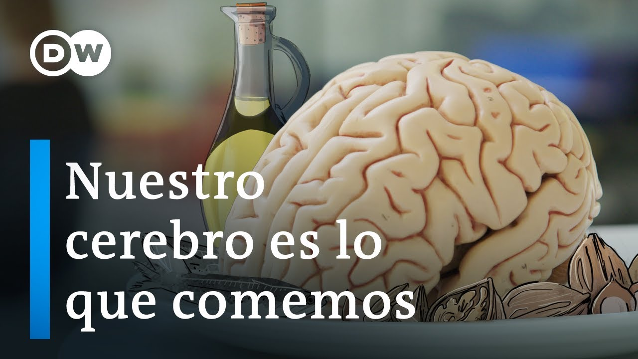 Nuestro cerebro y la alimentación