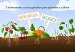 3 interesantes cursos gratuitos para aprender a cultivar