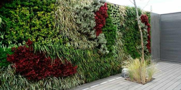 Curso gratuito de jardines verticales y cuadros vivos