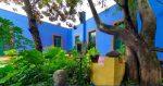 Paseamos virtualmente por el museo de Frida Kahlo y una bodega de Mendoza