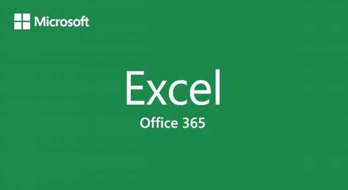 Aprende los conceptos básicos de Excel Office 365