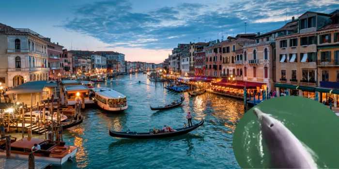 Paseo virtual en barco por los canales de Venecia, Italia