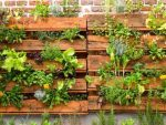Aprende a crear tu propia huerta urbana